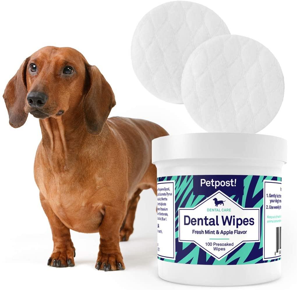 dog-teeth-wipe